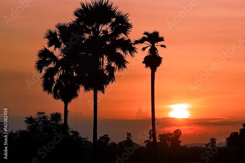 Silhouette landscape sunset background.
