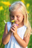 Beautiful young girl smells the field flowers