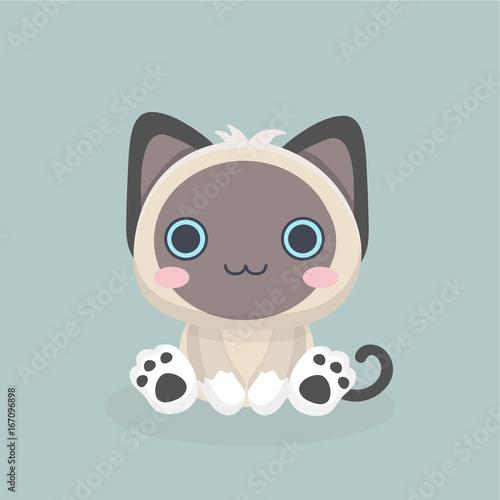 Siamese cat the Lovely kitten with blue eyes fluffy.