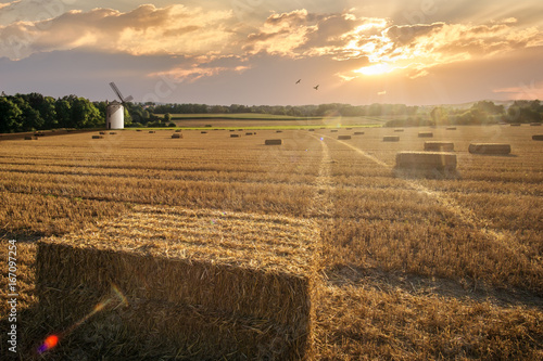 Fotobehang Jacht Sunset over a a wheat field in the harvest time. Sunset with rays of light, Germany.