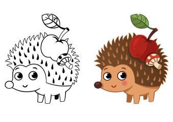 Hedgehog Coloring Page (Vector illustration)