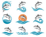 collection of tuna fish images with waves