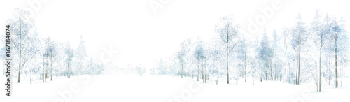 Vector winter  forest background, isolated on white. - 167184024