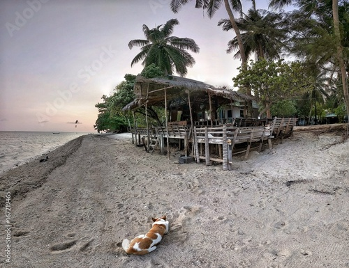 Foto op Canvas Tropical strand thailand