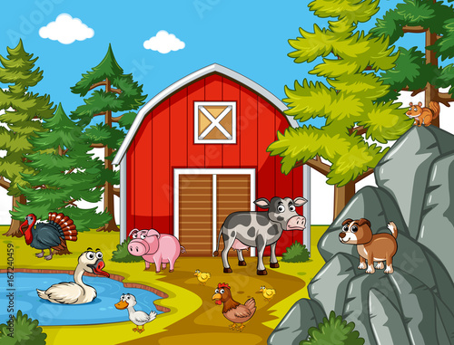 Many farm animals in the farm