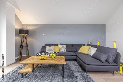 Room with gray corner sofa