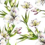 Seamless pattern with alstroemeria. Hand draw watercolor illustration. - 167289812