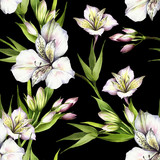 Seamless pattern with alstroemeria. Hand draw watercolor illustration. - 167289821