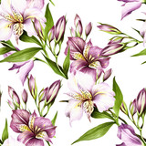 Seamless pattern with alstroemeria. Hand draw watercolor illustration. - 167289877