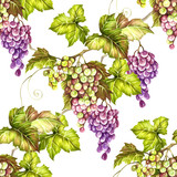 Seamless pattern with grapes. Hand draw watercolor illustration. - 167290079