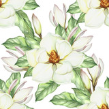 Seamless pattern with magnolia. Hand draw watercolor illustration. - 167290225
