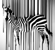 zebra - 167359457