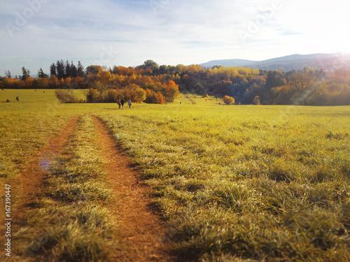 Wandern im Herbst auf Wanderweg