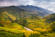 Rice terraces of Hmong ethnic minority