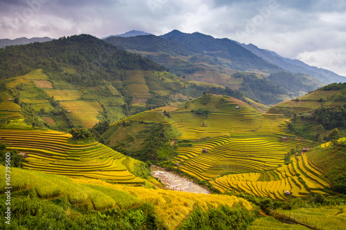 Papiers peints Miel Rice terraces of Hmong ethnic minority