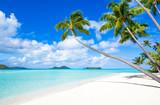 Sommer, Sand und Strand auf einer tropischen Insel - 167401000
