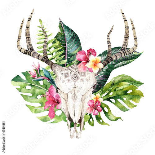 Watercolor bohemian cow skull and tropic palm leaves. Western deer mammals. Tropical deer boho decoration print antlers. flowers, leaves feathers. Isolated on white background. Aloha design. - 167401681