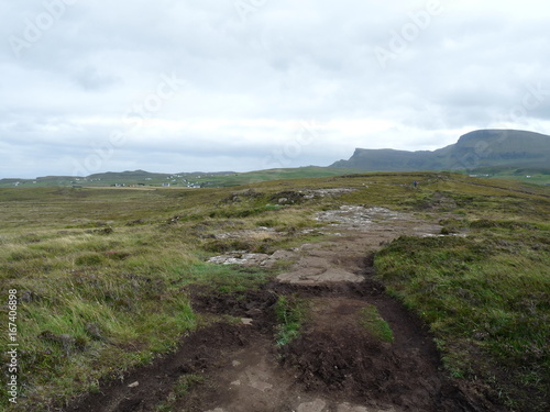 boggy path