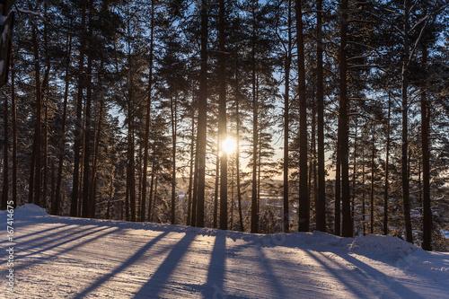 In de dag Tunnel Winter forest, Lahti, Finland