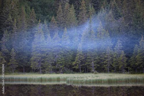 Poster Grijze traf. Maricheyka lake in Carpathian Mountains, Ukraine.
