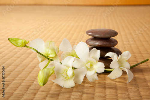 Zen stones and orchids