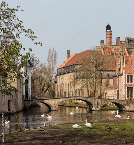 Minnewater park in Bruges