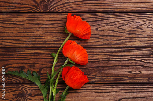 Red poppy on wood