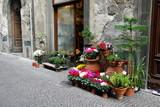 オルヴィエートの花屋