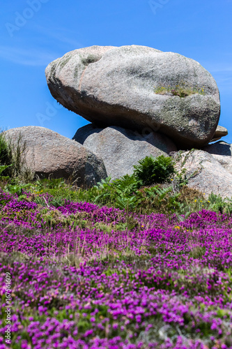 Rocks of the pink granite coast in Brittany