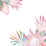Floral card with protea. Watercolor template for wedding invitations, posters, valentines day, easter, birthday - 167605478