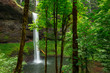 Forest Waterfall - 167614605
