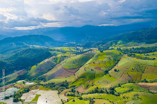 Tuinposter Rijstvelden Aerial top view photo from flying drone of green rice fields in countryside Land with grown plants of paddy and sea of fog at Pa Pong Piang, Thailand