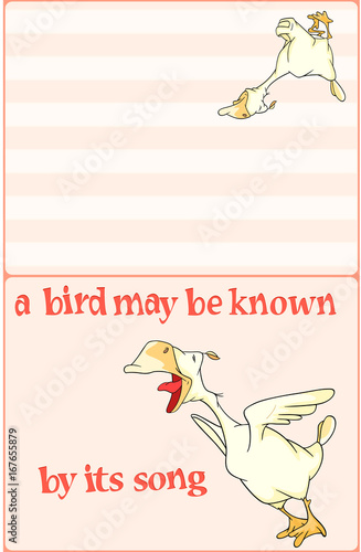 Illustration of a Domestic Geese. Postcard. Proverb