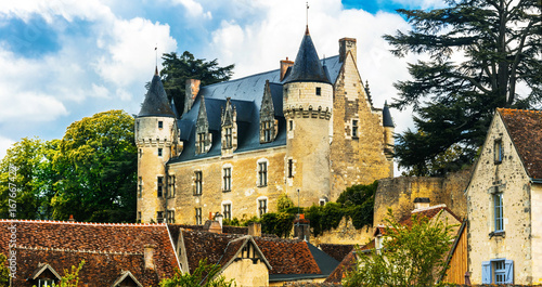 Fotobehang Freesurf Beautiful romantic castles of Loire valley - Montresor chateau. France
