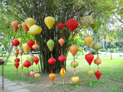 Fotobehang Tulpen Colorful in Vung Tau