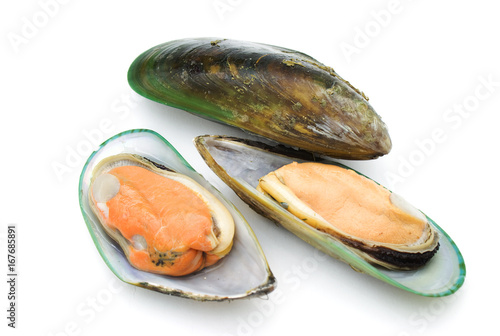 Wall mural Green mussels isolated on white background