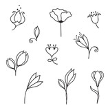 Set of hand drawn doodle flowers and floral design elements