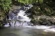 Bieszczady wodospad - 167703642