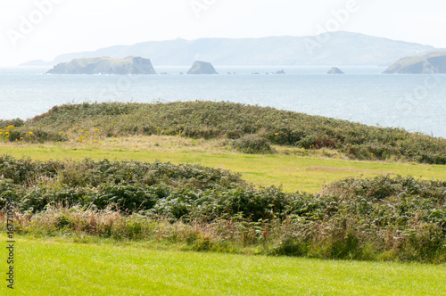 Foto op Canvas Wit Rural landscape in West Cork