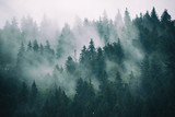 Misty landscape with fir forest in hipster vintage retro style © Roxana