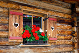 Typical bavarian or austrian wooden window with red geranium flowers on house in Austria or Germany - 167749288