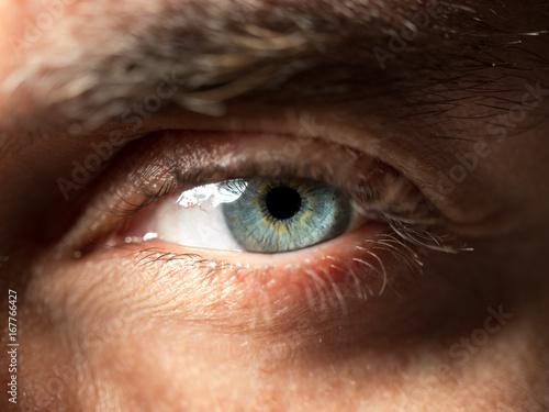 Juliste Green eye close up shot.