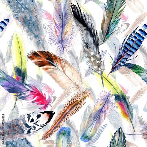Akwarela wzór pióro ptak od skrzydła. Pióro Aquarelle dla tła, tekstury, wzór opakowania, ramki lub obramowania.