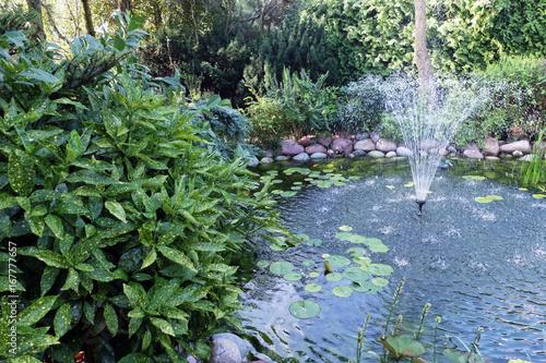 fontanna w oczku wodnym