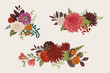 Summer and autumn set floral bouquets. Dahlias, Ruscus, Viburnum, Ranunculus. Modern floristics. Vector illustration. Colorful.