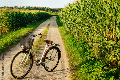 Classic styled bicycle in the corn field