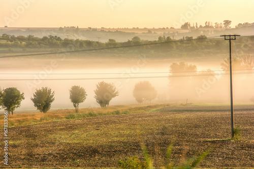 Hügelige Landschaft mit Morgennebel in den Tälern