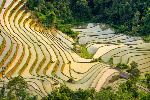 Tuinposter Rijstvelden Beautiful Hoang Su Phi Ha Giang province in Vietnam