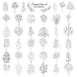 Hand Drawn Monochrome Floral Elements Set