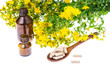 Natural capsules from St. John's wort